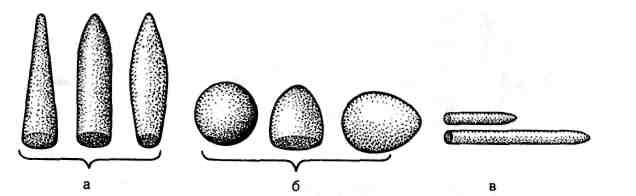 osnovi-dlya-vaginalnih-suppozitoriev